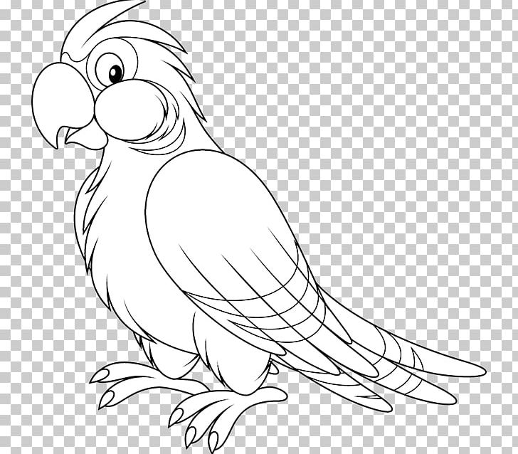 Parrot Bird Black And White PNG, Clipart, Animals, Artwork.