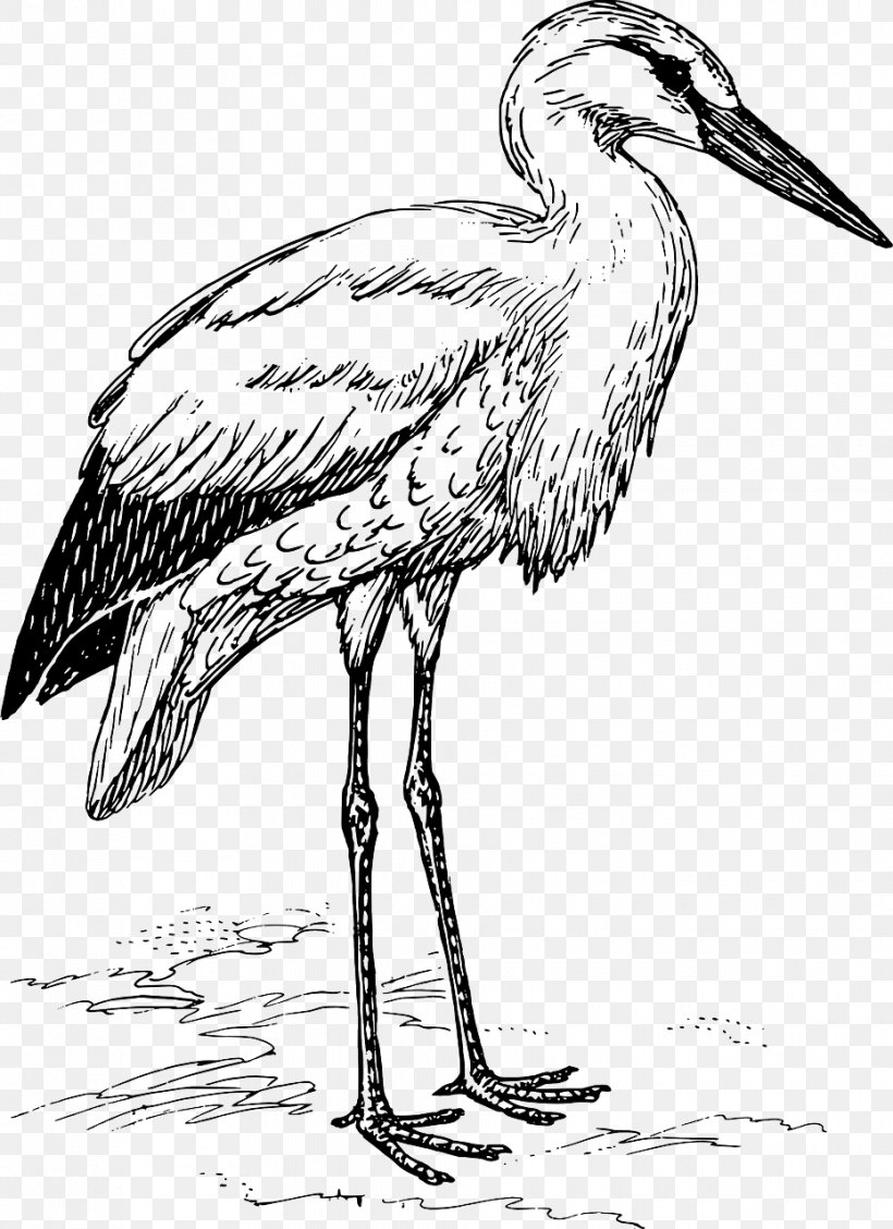 White Stork Bird Clip Art, PNG, 930x1280px, White Stork, Art.