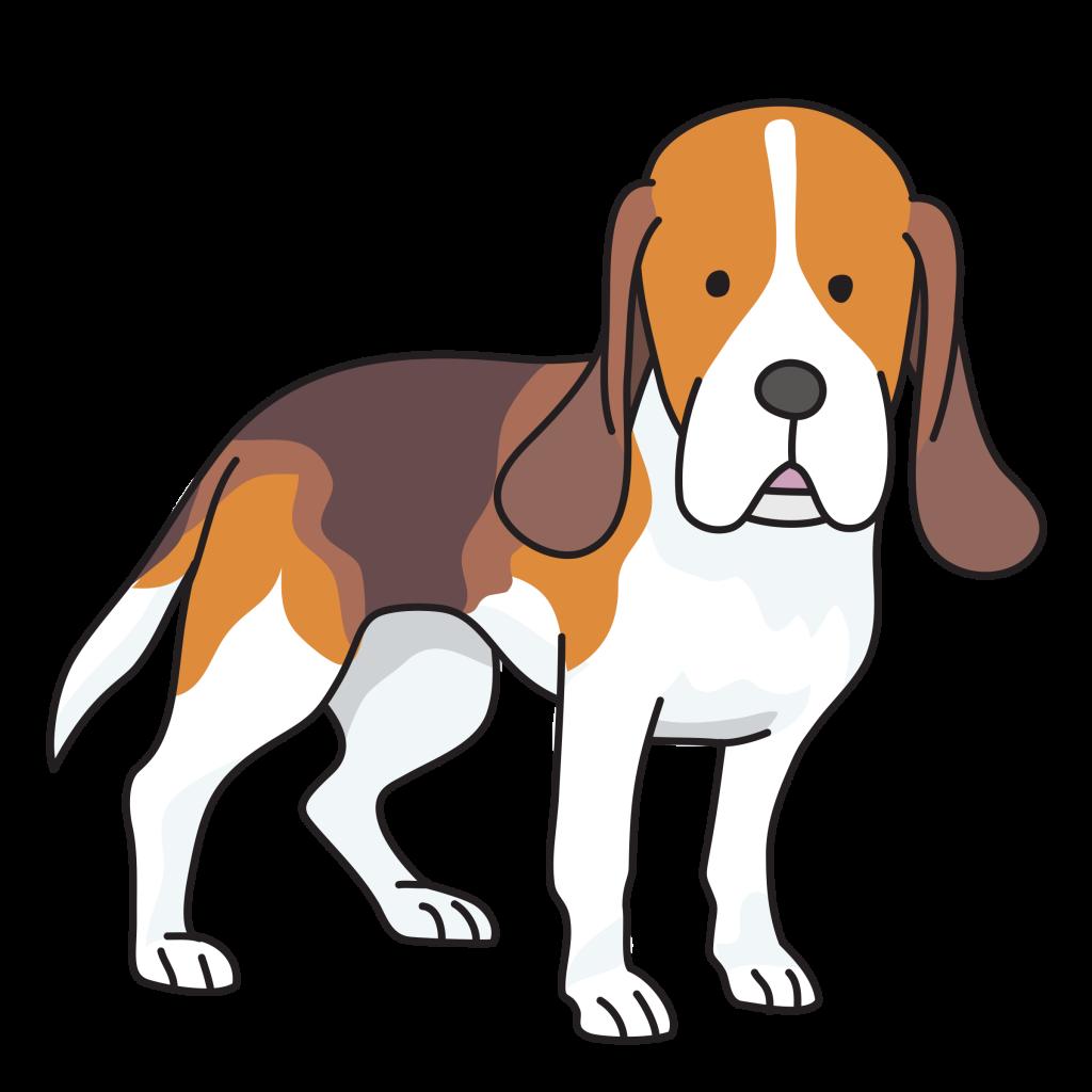 Beagle Puppy Basset Hound Foxhound Clip art.