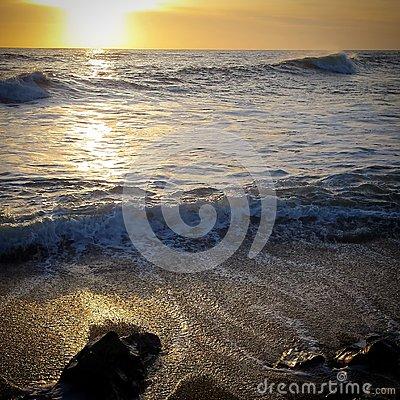 Pebble Beach At Bean Hollow State Beach In California Royalty Free.