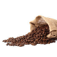 Download Coffee Beans Free PNG photo images and clipart.