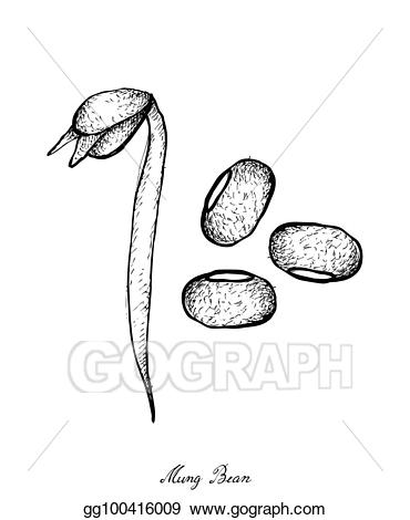 Collection of 14 free Bean clipart bean sprout bill clipart dollar.