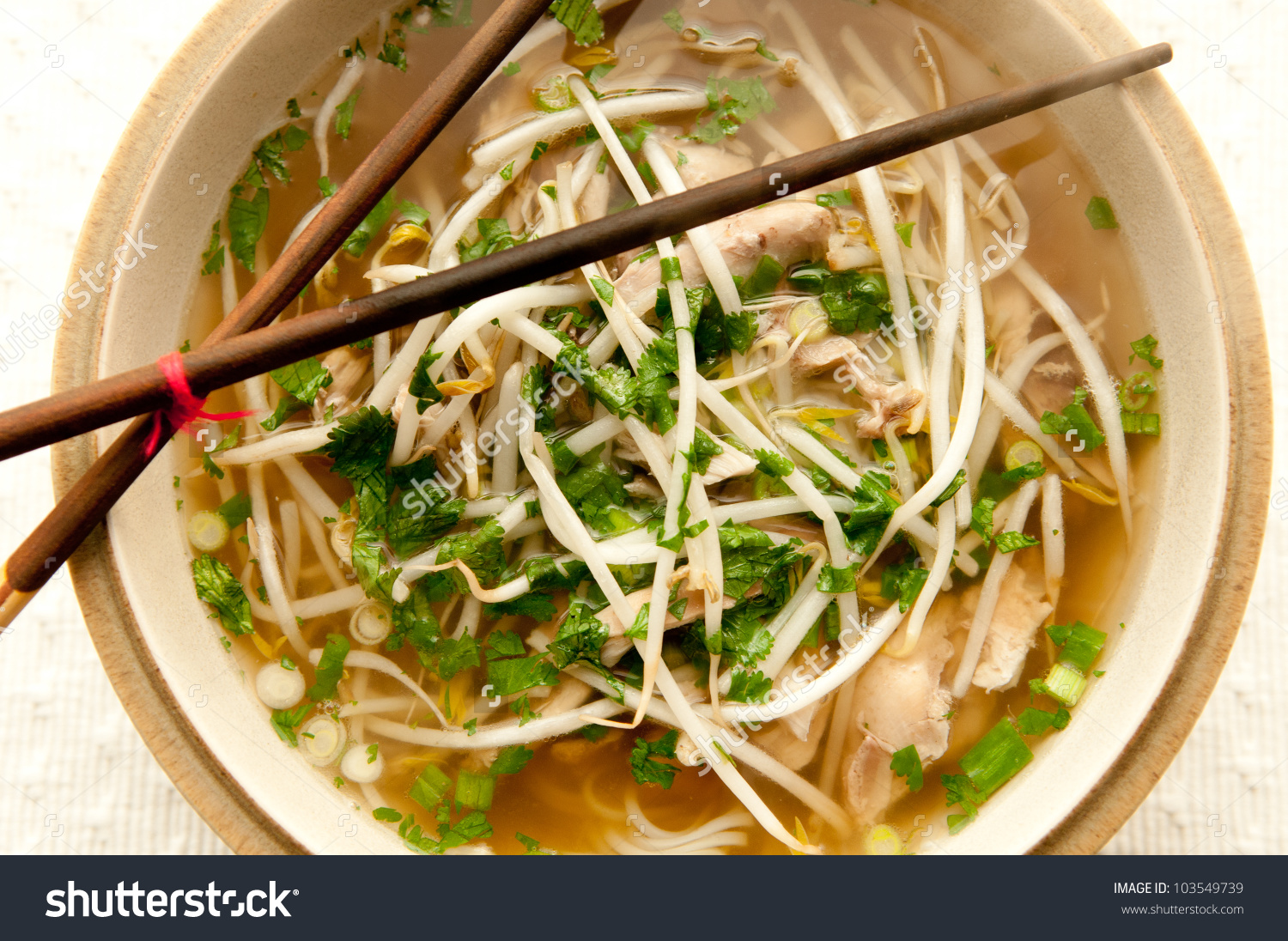 Vietnamese Pho Soup Ethnic Meal Chicken Stock Photo 103549739.