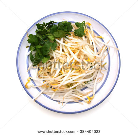 Bean Sprout Stock Photos, Royalty.