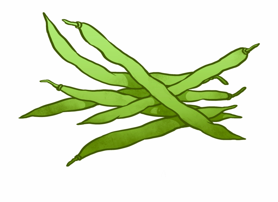 Peas Drawing Runner Bean.