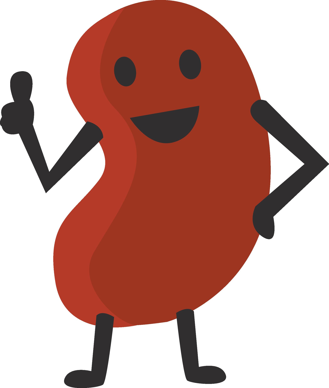 Kidney Bean Clipart.