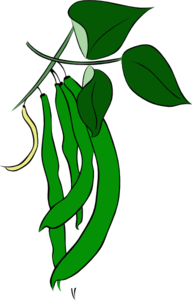 Green Beans Clip Art at Clker.com.