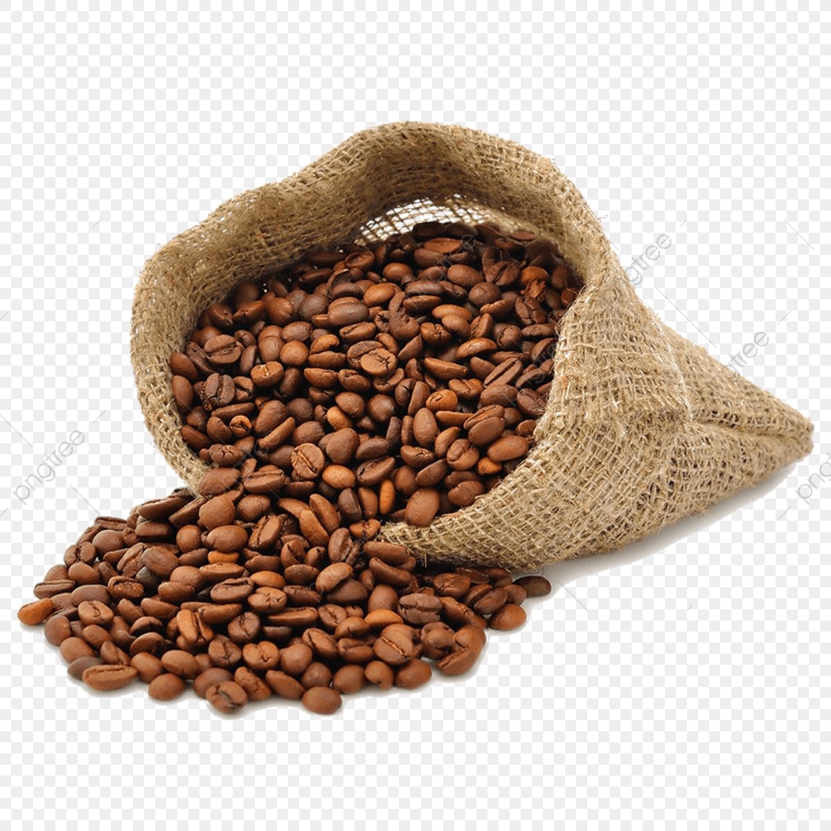 Coffee Beans, Coffee, Food PNG Transparent Clipart Image and PSD.