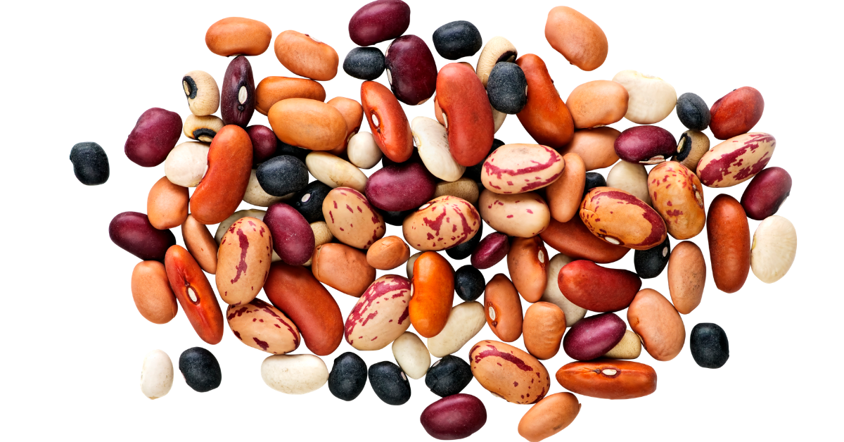 Beans Png (99+ images in Collection) Page 3.