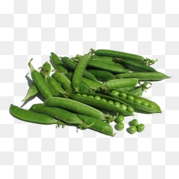Green Beans Png (108+ images in Collection) Page 2.