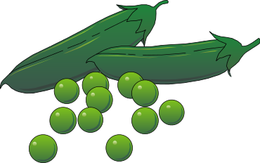 Free Vegetable Clipart, 14 pages of Public Domain Clip Art.