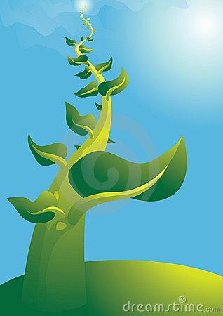 Beanstalk Stock Illustrations.