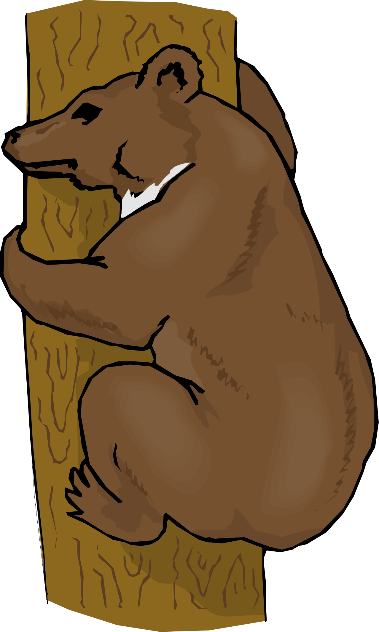 Cartoon Bear.