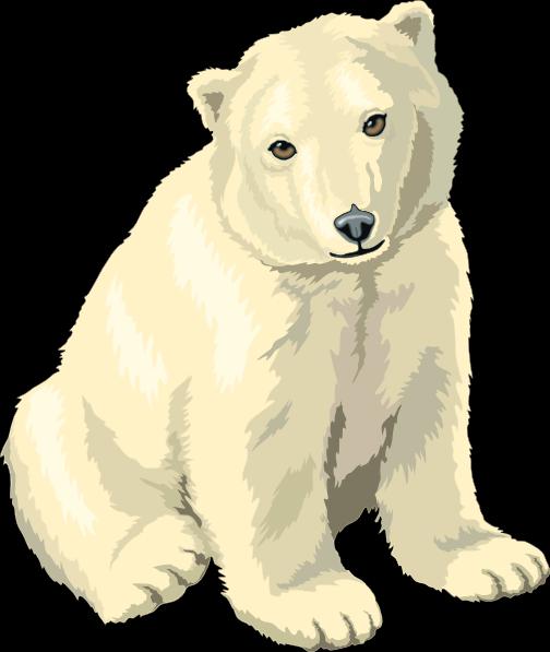 Sitting Polar Bear Cub Clip Art.