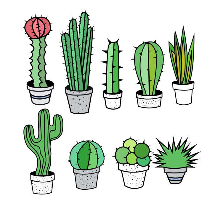 1000+ ideas about Cactus Clipart on Pinterest.