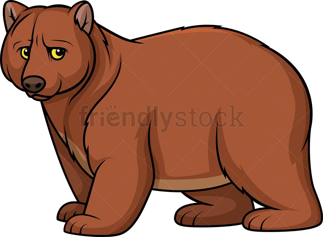 Wild Bear.