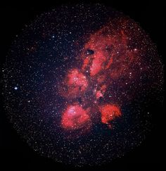 Highlights from VISTA's infrared view of the Cat's Paw Nebula.