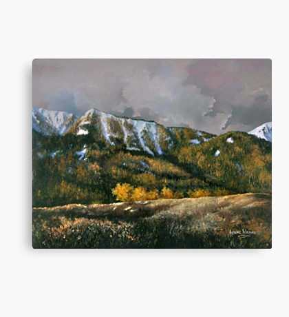 Bear Claw: Canvas Prints.