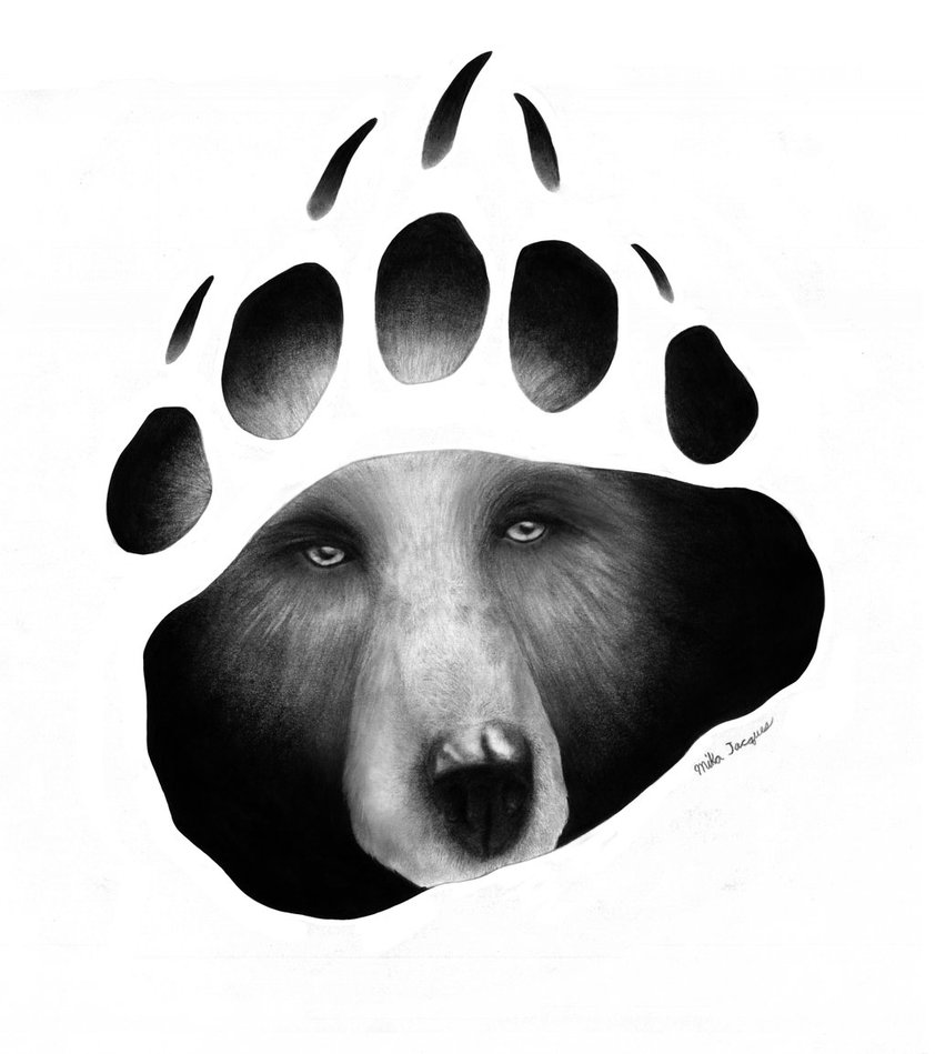 1000+ images about bear tattoos on Pinterest.