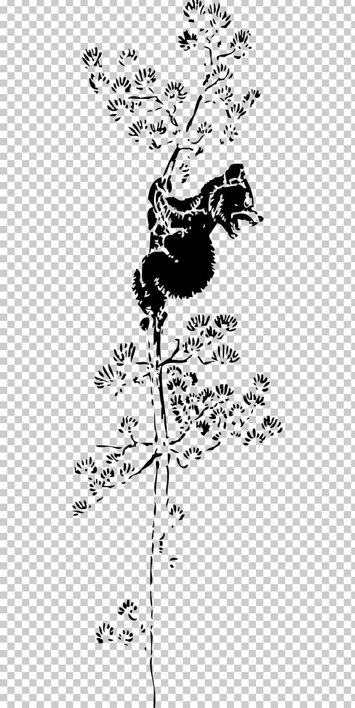American Black Bear Giant Panda Tree Climbing PNG, Clipart.