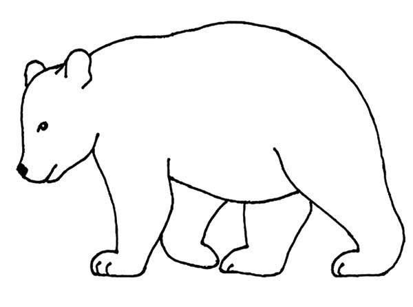 Free Bear Outline, Download Free Clip Art, Free Clip Art on Clipart.