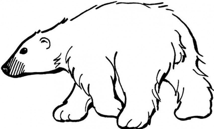 Polar Bear clipart printable #3.