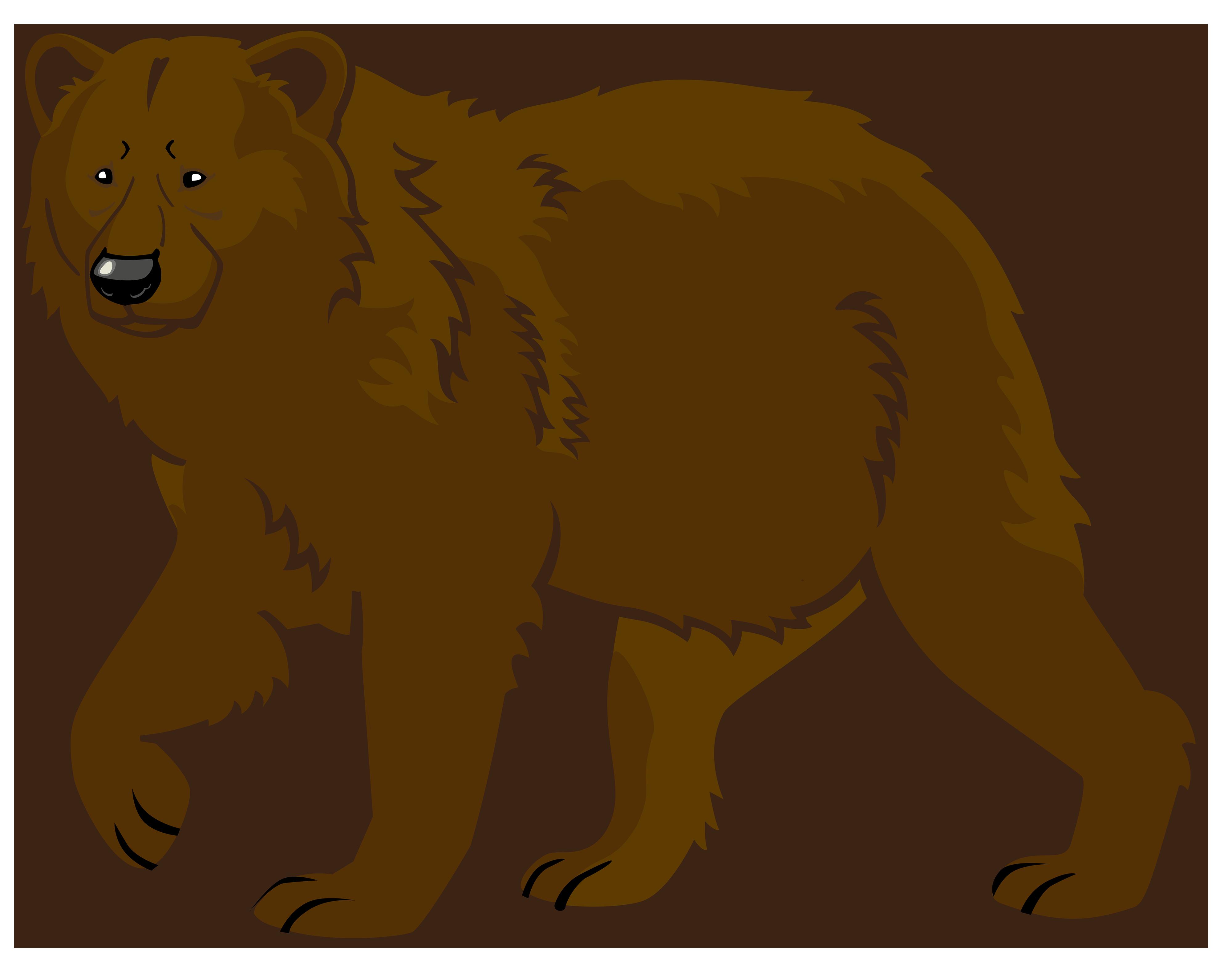 Brown bear Polar bear American black bear Giant panda.