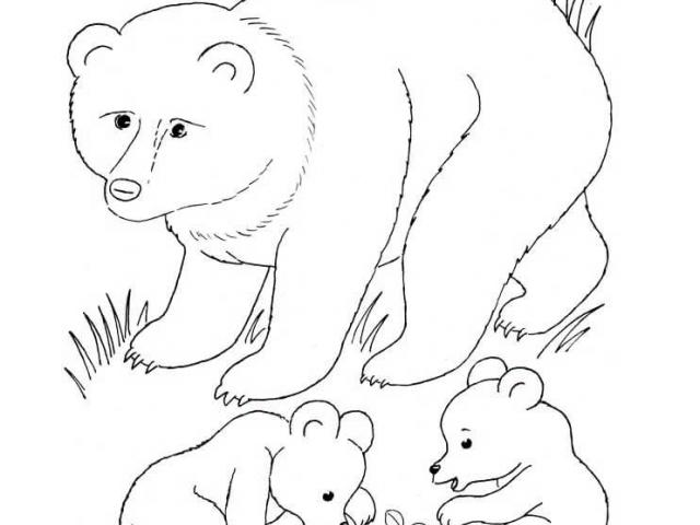Free Bear Cub Clipart, Download Free Clip Art on Owips.com.