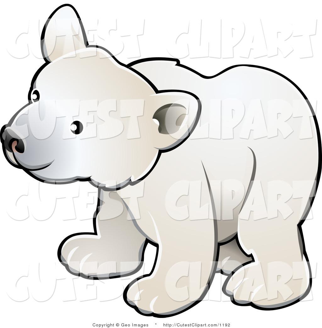 Baby Bear Cub Clipart.