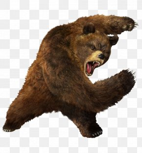 Grizzly Bear Images, Grizzly Bear Transparent PNG, Free download.