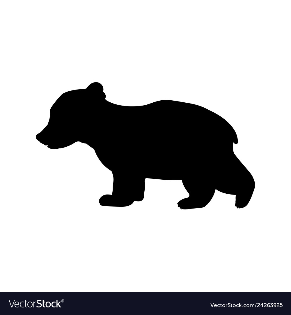 Bear cub wild black silhouette animal.