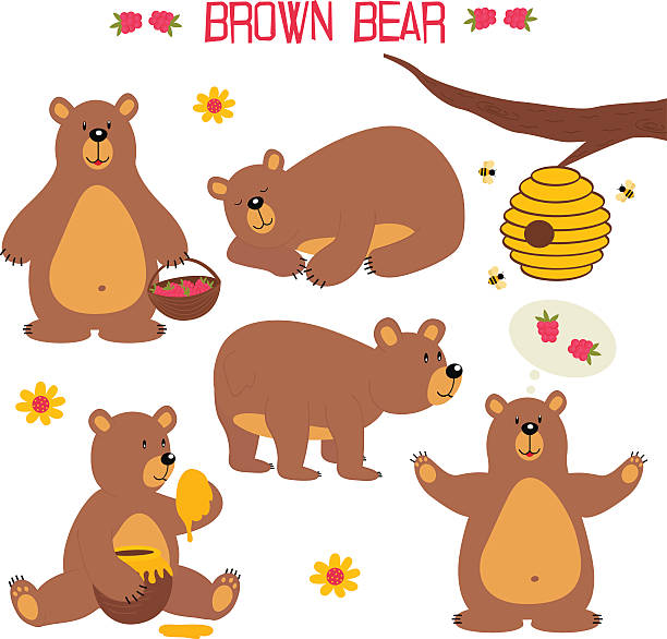 Best Bear Eating Honey Illustrations, Royalty.