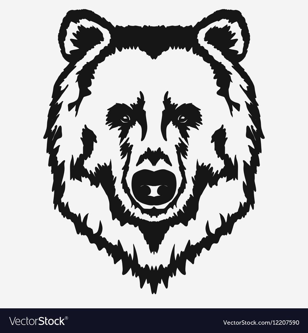 Bear head cartoon.