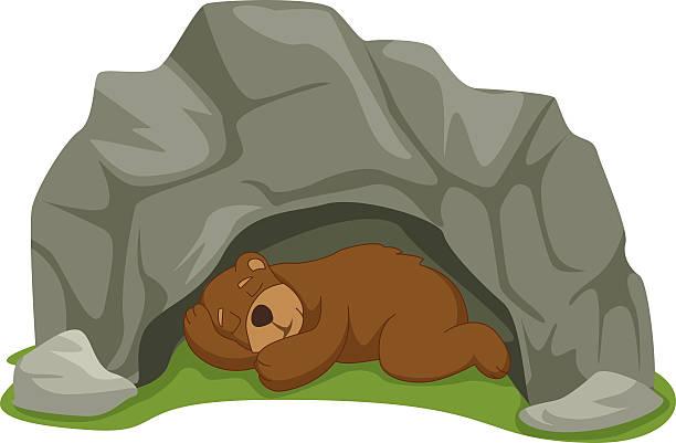 Hibernating bear clipart 3 » Clipart Station.