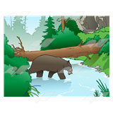 Log Bridge over River, in forest with adult bear catching fish in river.