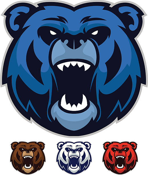 Best Bear Mascot Illustrations, Royalty.