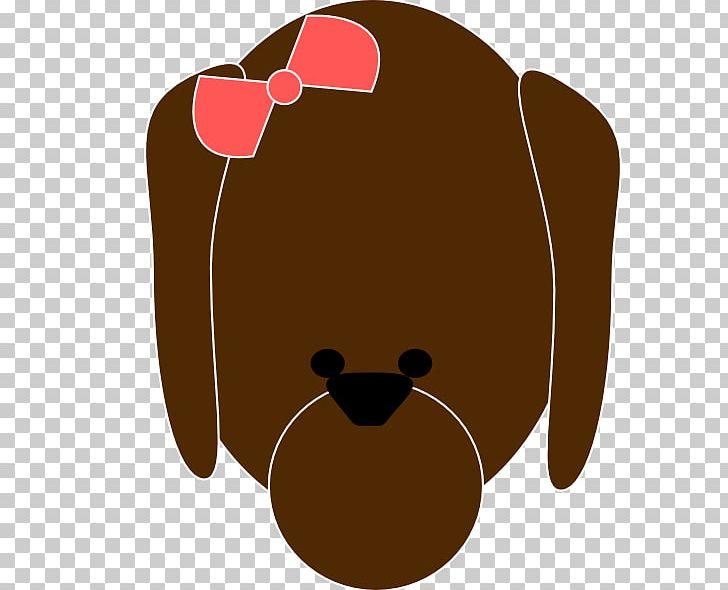 Bear Nose Carnivora Canidae PNG, Clipart, Animal, Bear, Brown.