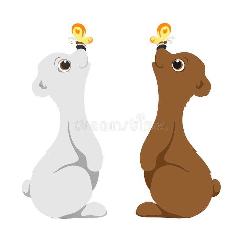 Nose Bear Stock Illustrations.