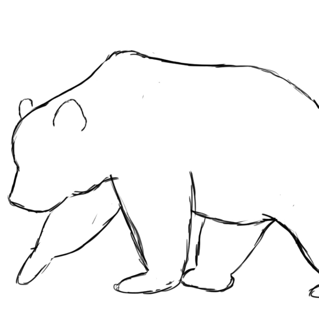 Bear outline clipart 2 » Clipart Station.