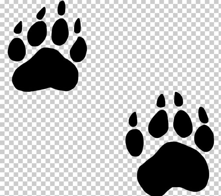Bear Paw Dog Cat PNG, Clipart, American Black Bear, Animal, Animal.