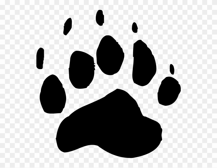 Bear Paw Clipart Transparent.