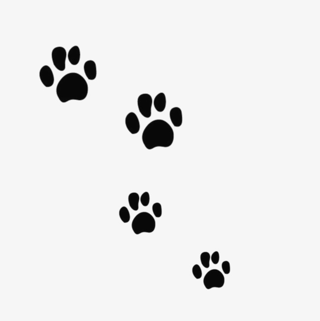 Black Bear Paw Prints, Paw Clipart, Paw, Mark PNG Transparent Image.