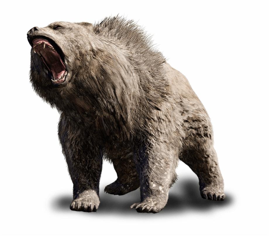 Beast Vector Angry Bear.
