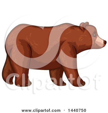 Clipart of a Brown Bear Walking in Profile.