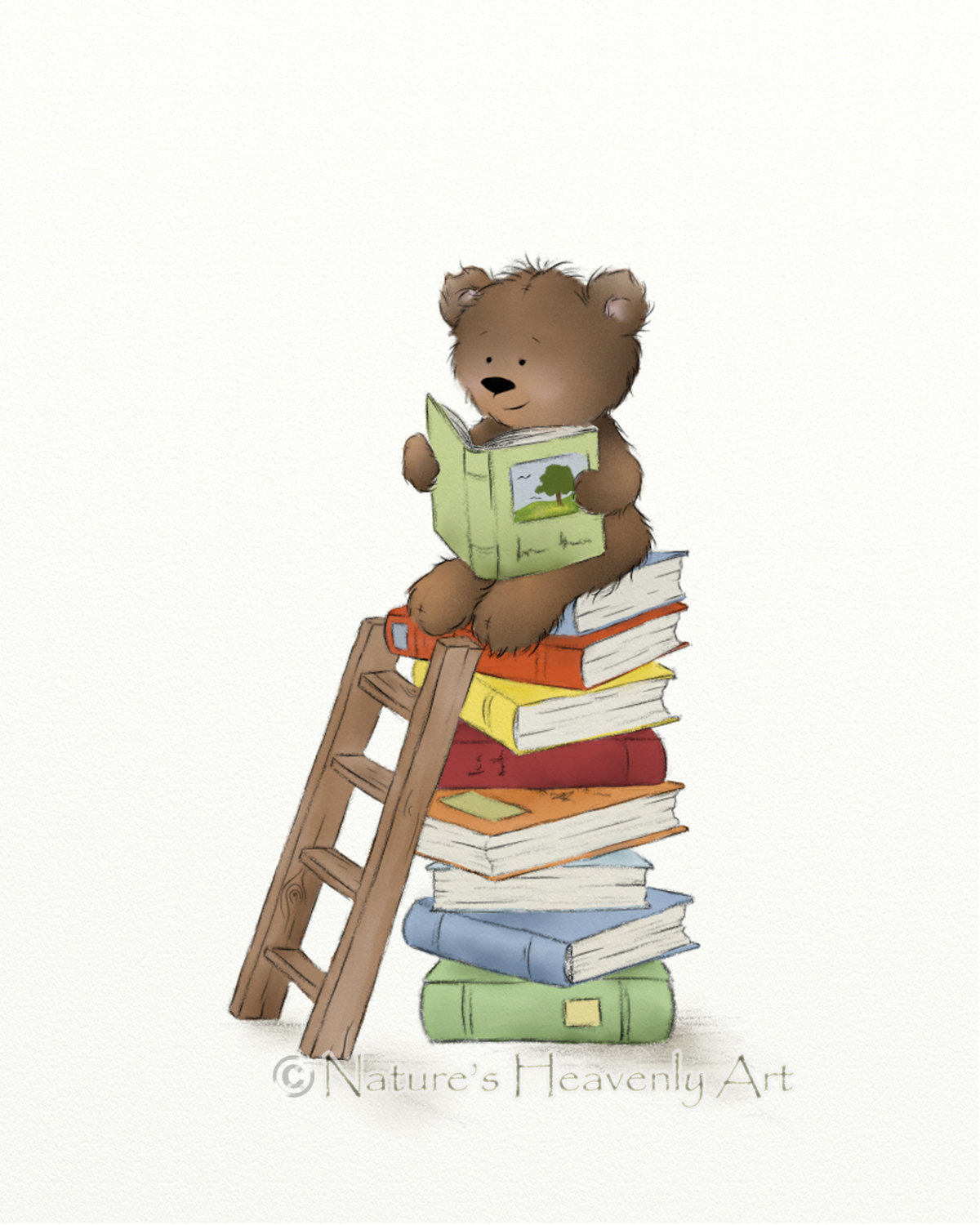 Bear Reading Clipart Clipground