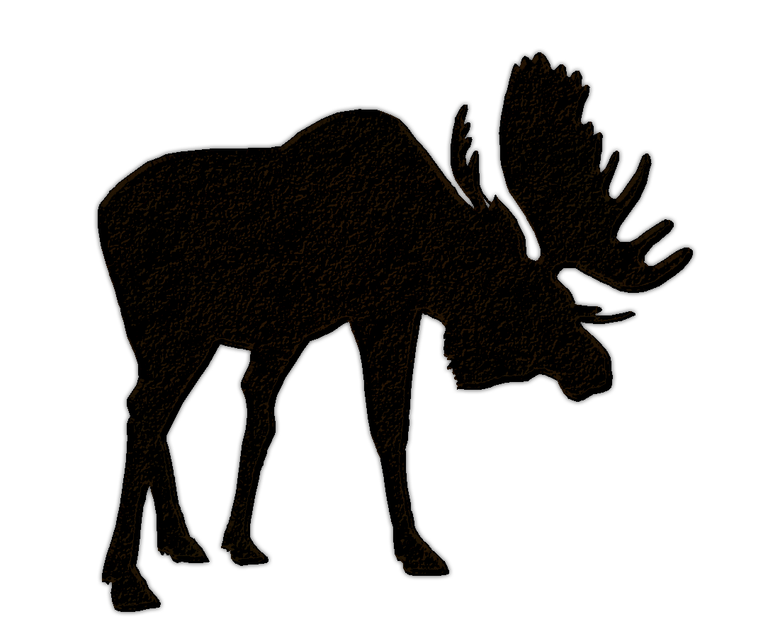 Moose clipart bear for free download and use images in presentations.