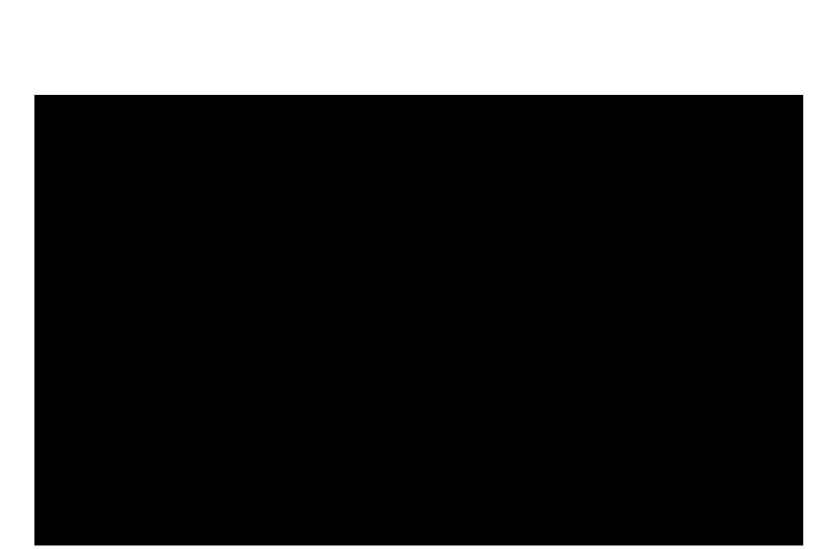 polar bear silhouette.