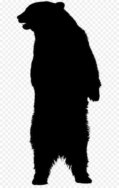 American black bear Brown bear Silhouette.