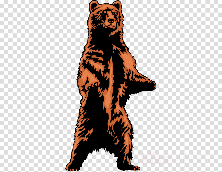 Polar Bear Cartoon clipart.