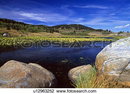 Stock Photo of Boulders on Lily Pond, Beartooth Mountains.